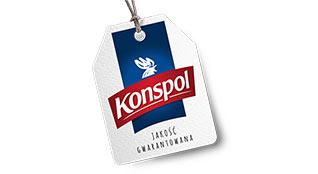 logo konspol