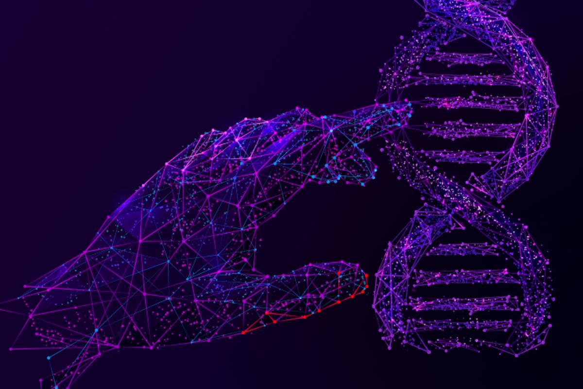 Czym jest DNA marki?